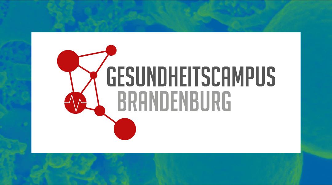 Einfach erklärt – Transferangebote in den Gesundheitswissenschaften in Brandenburg